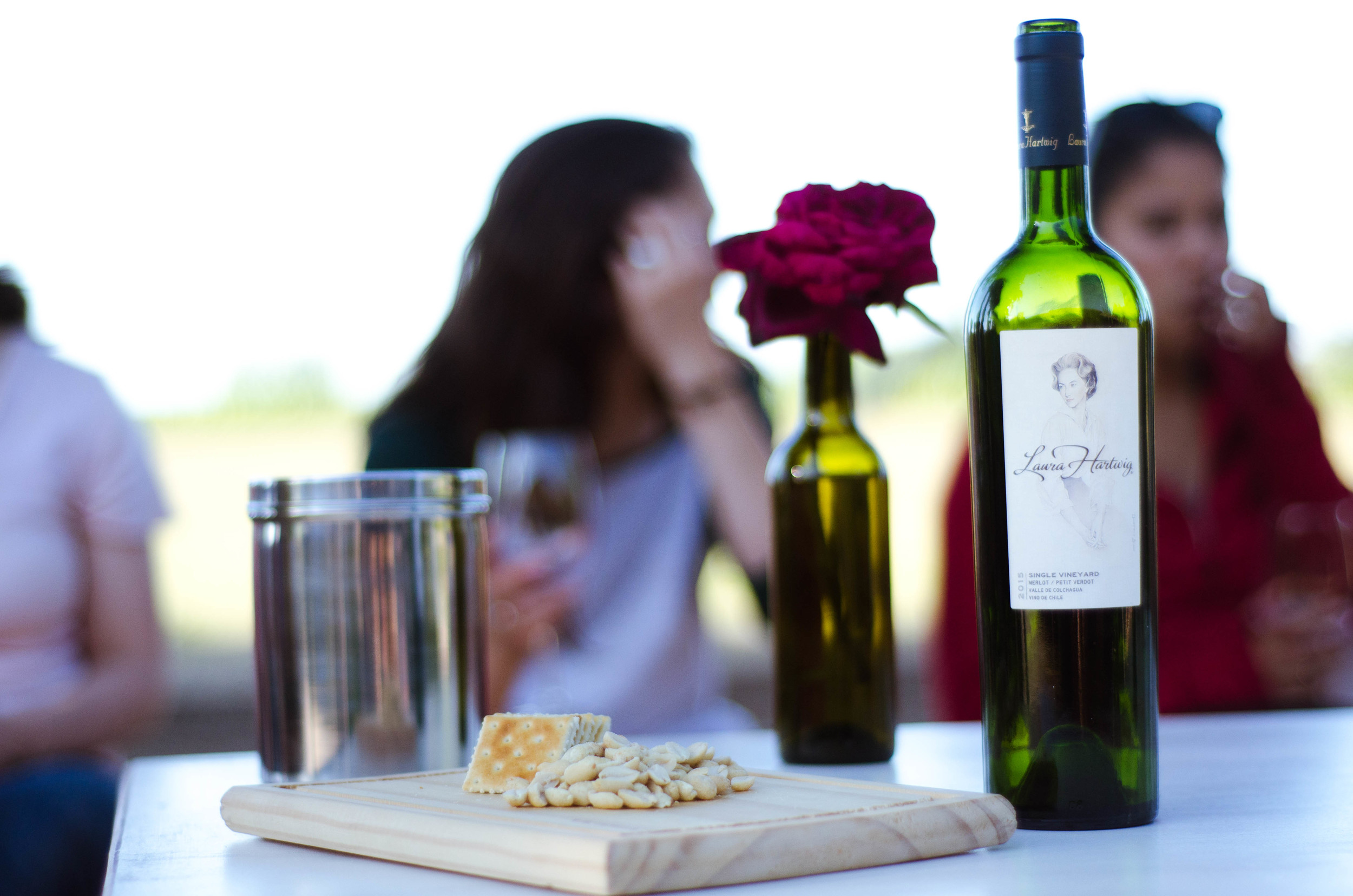 Wine tasting at Laura Hartwig vineyard // 27 november