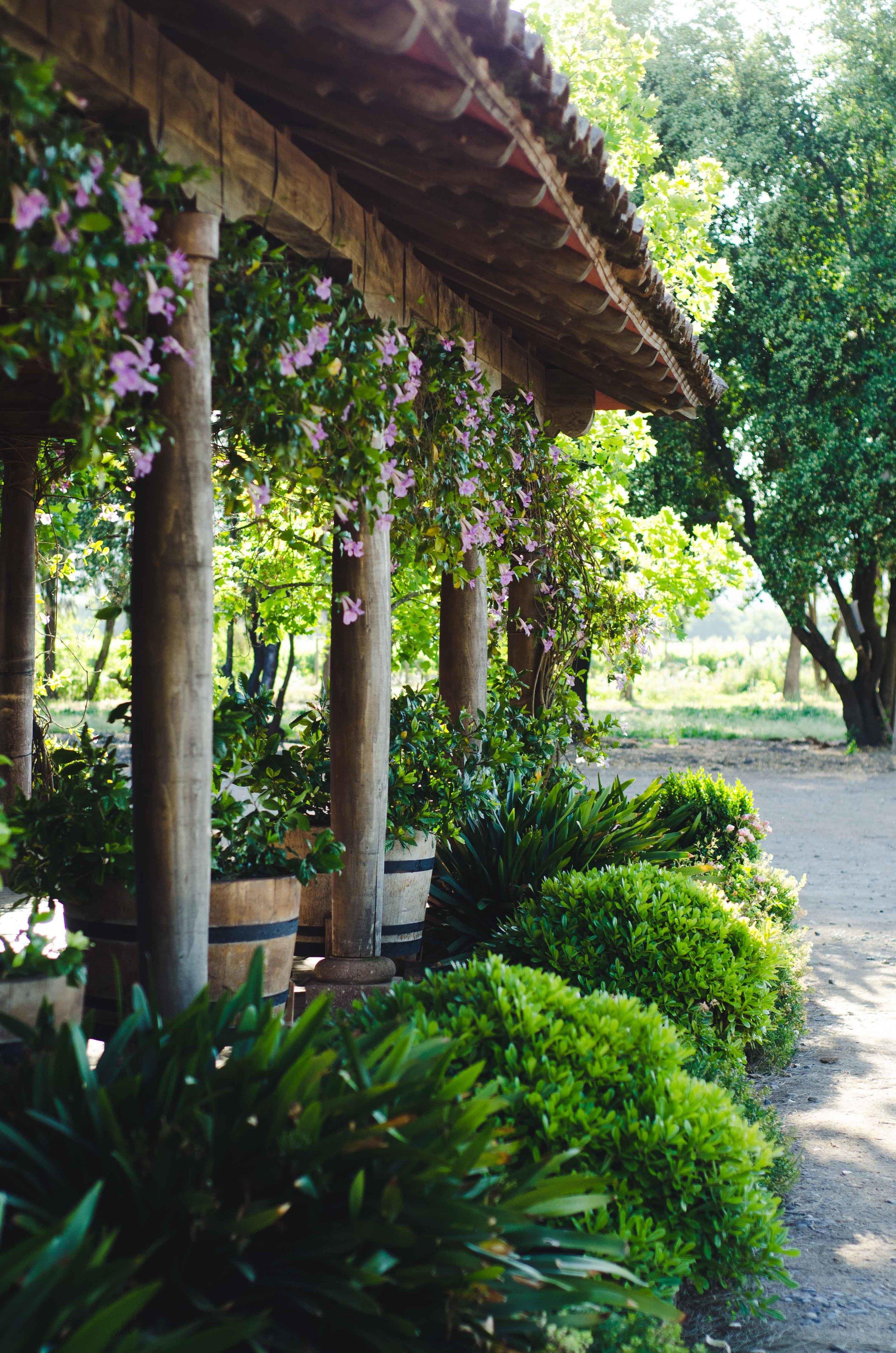 Patio at the vineyard