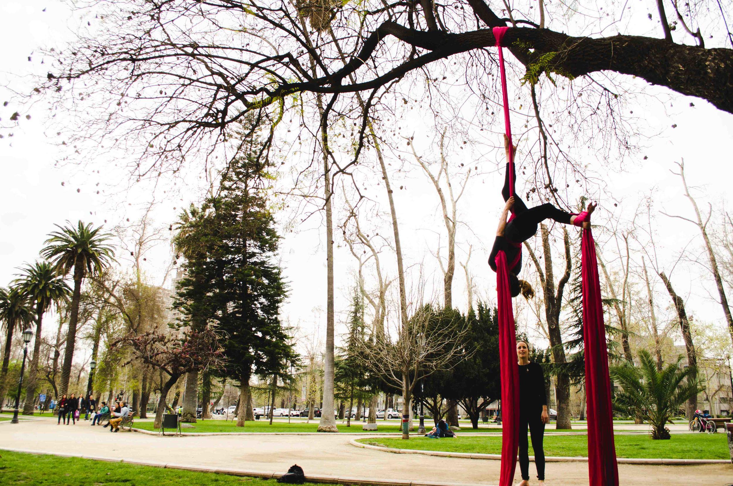 Aerial silks in Bellavista, Santiago
