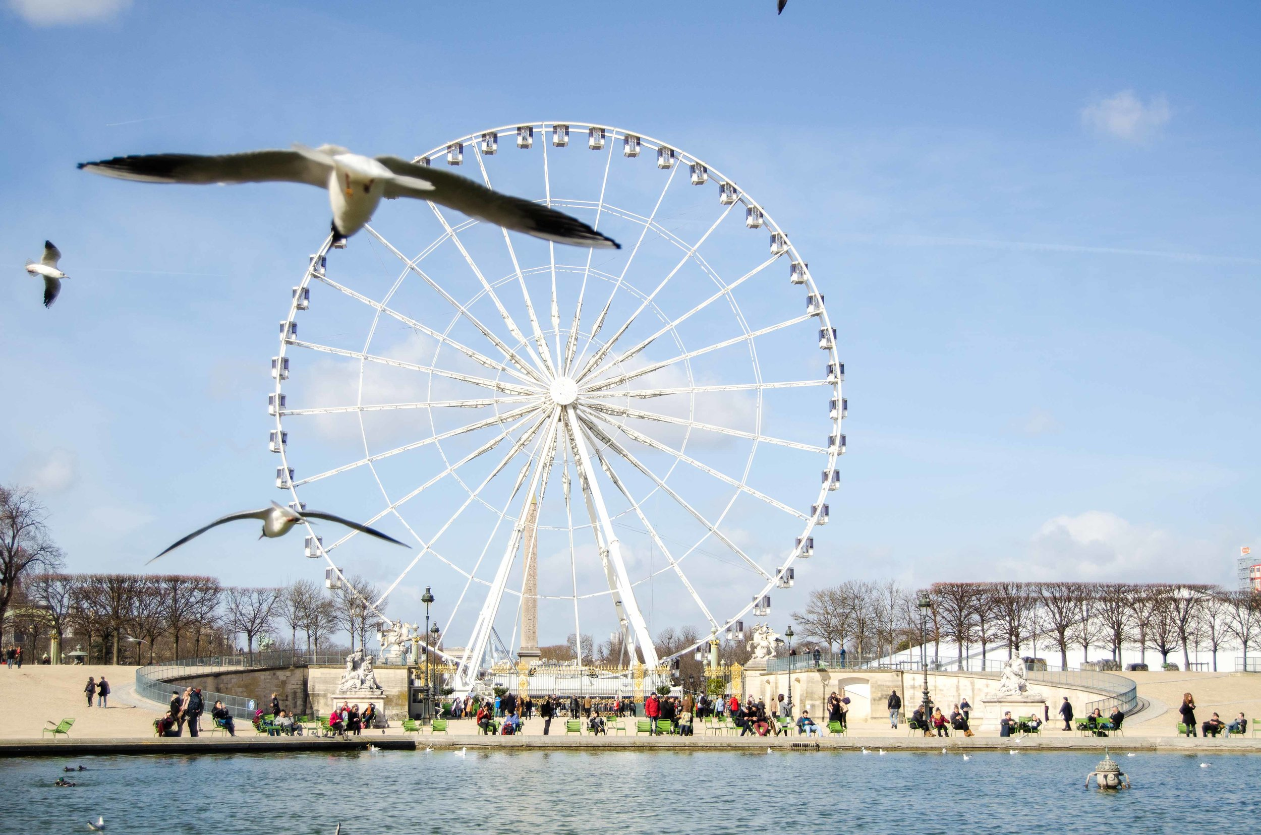 march 2 // ferris wheel at the top of the Jardin des Tuileries