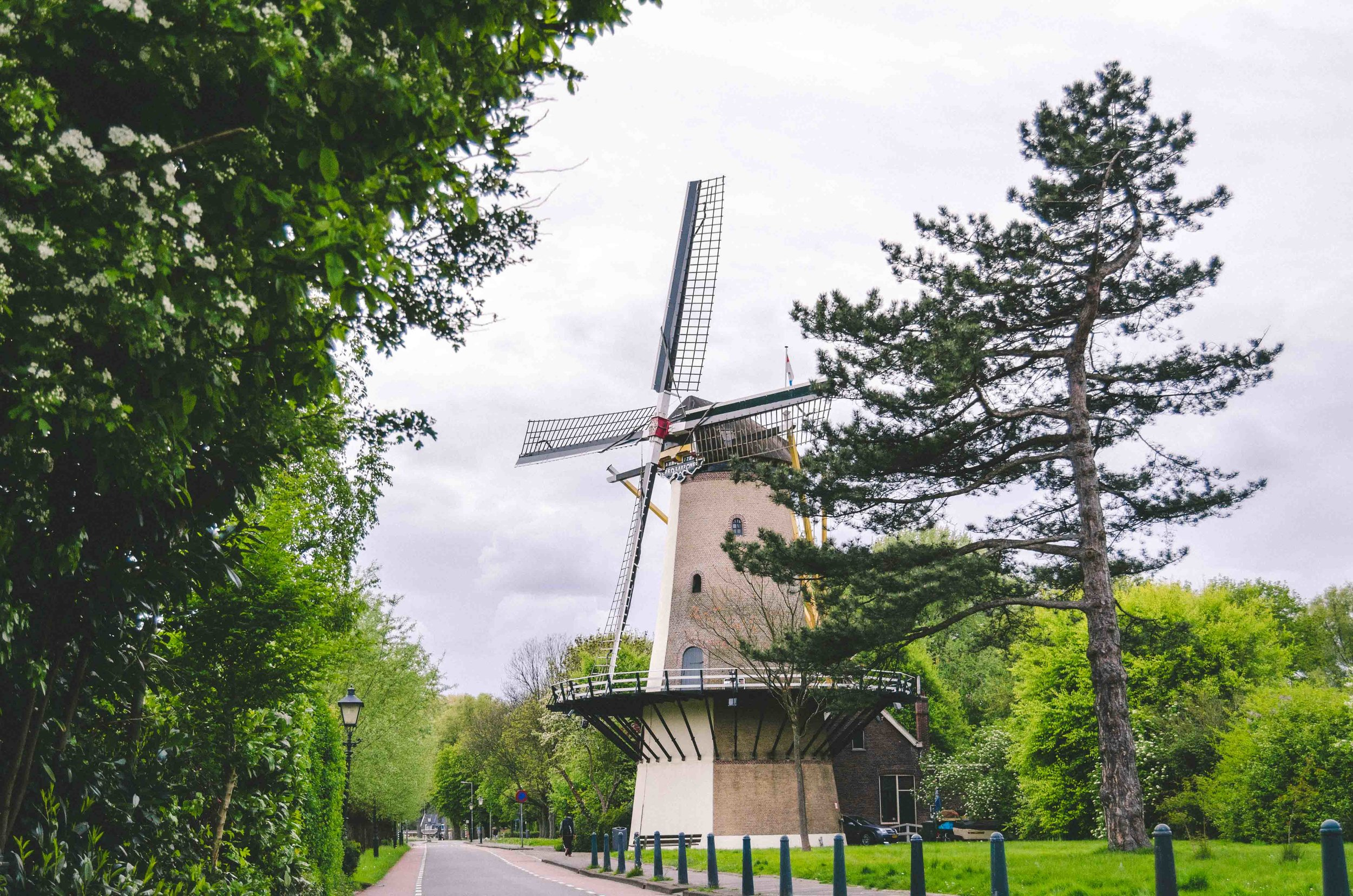 De Zandweg, a mill near the  Zuiderpark  in Charlois neighborhood