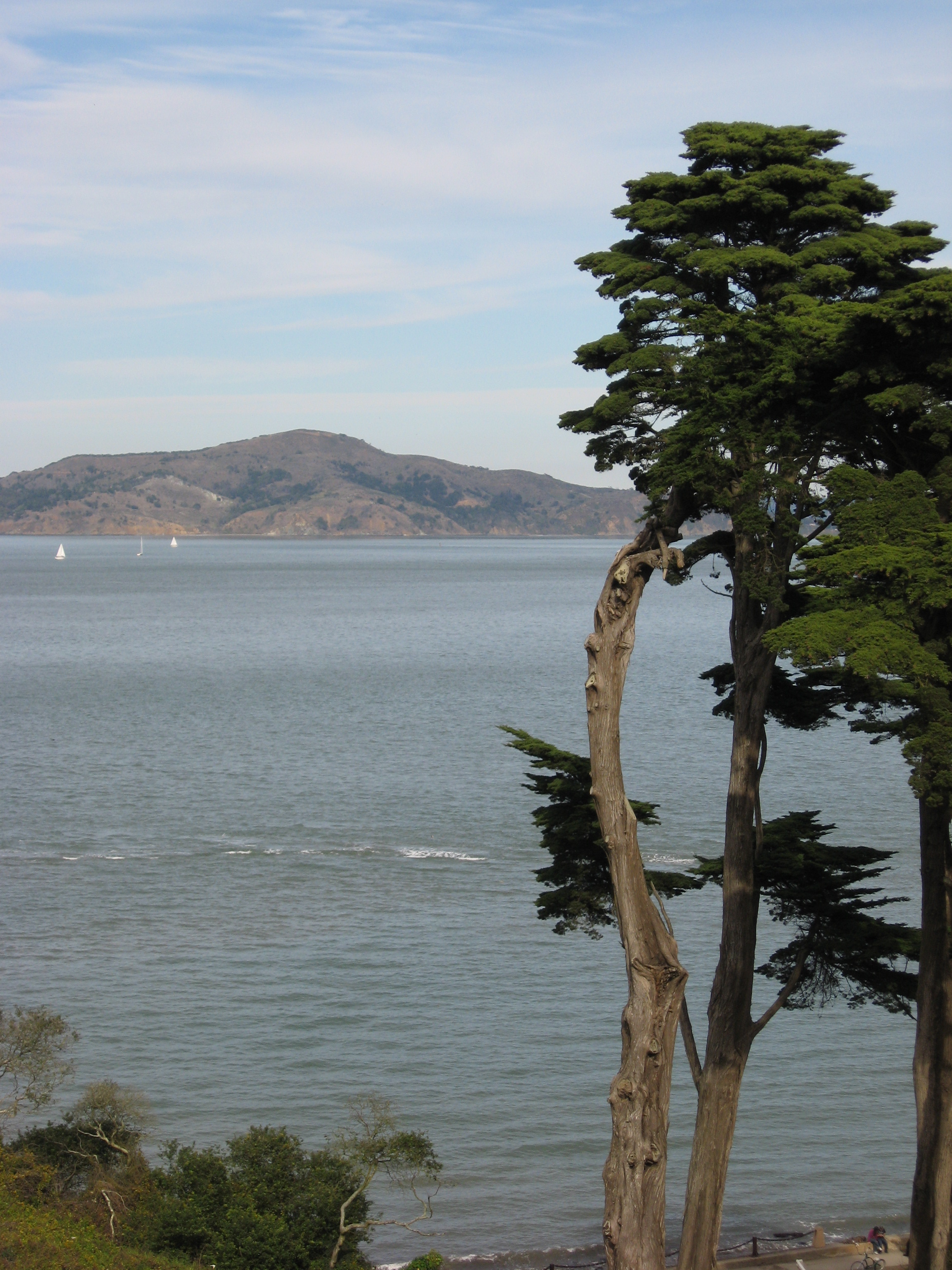 A view of San Francisco Bay.