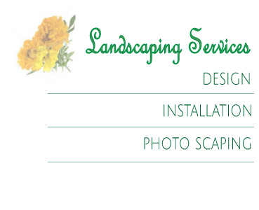 landscaping-Services-Box.jpg