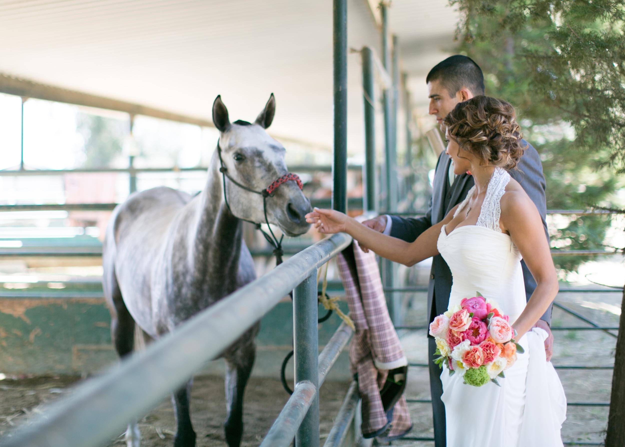 Gorgeous Eve Torres Wedding....