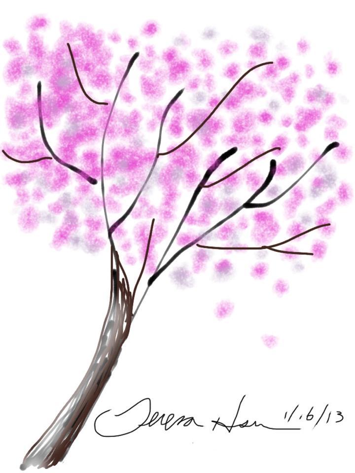 Cherry Blossom Dream.jpg