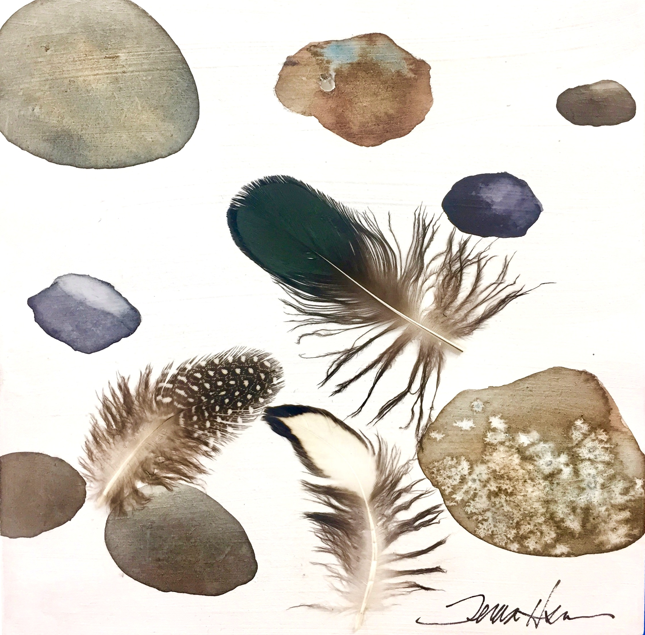 Rocks and Feathers