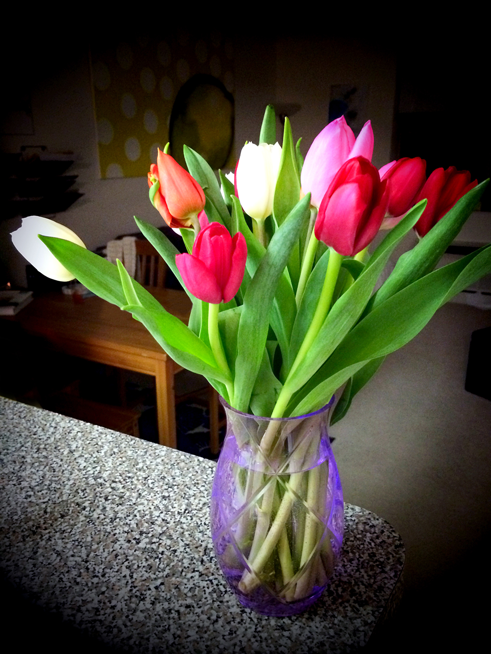 4/12/14 Tulips from Mom & Dad Cahill ♥