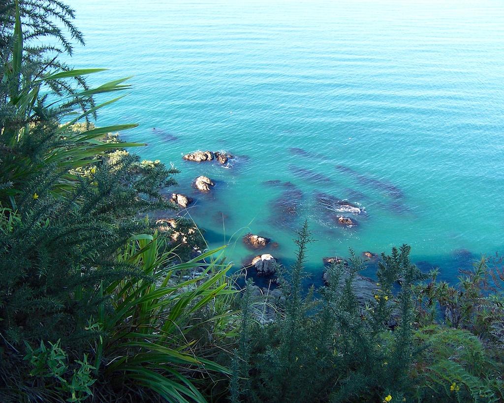 Scenes from New Zealand: Whakatane
