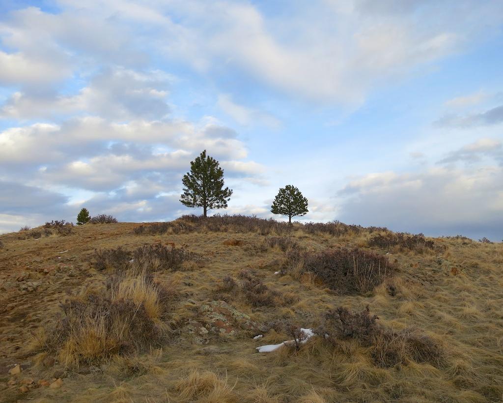 Near Helena Montana