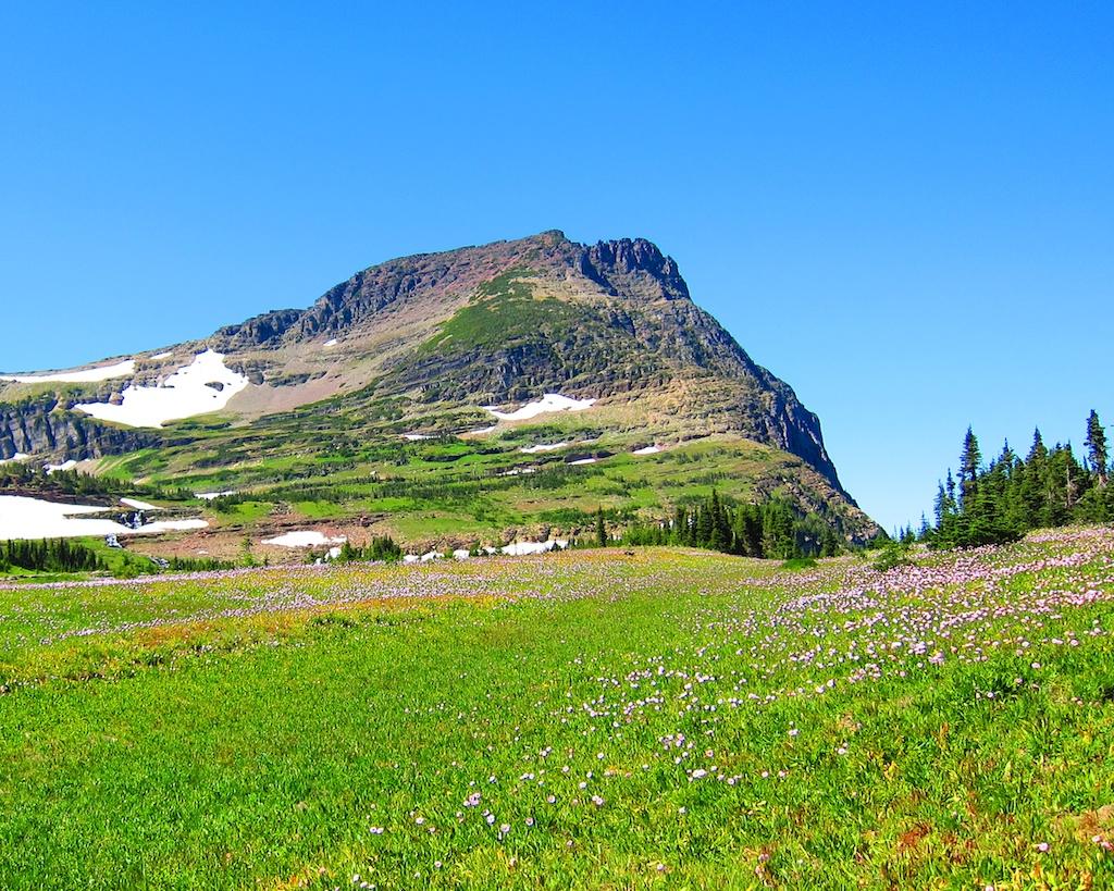 Logan Pass Glacier National Park Montana