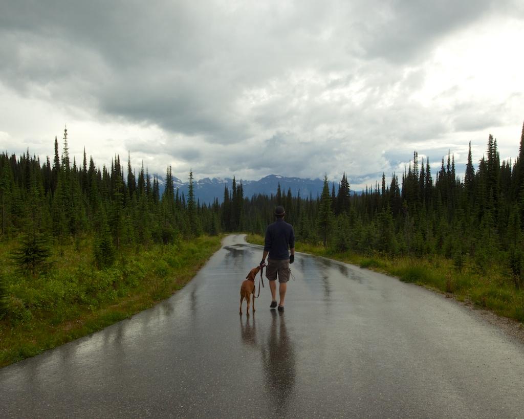 Downpour in Mount Revelstoke National Park www.glutenfreetravelette.com