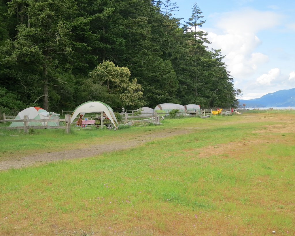 Camp Here: Spencer Spit State Park on Lopez Island