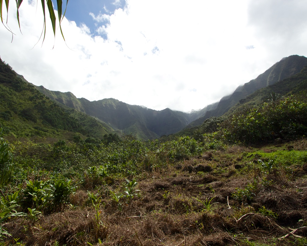 The Kalalau Trail: Hanakapi'ai Beach to Hanakapi'ai Falls