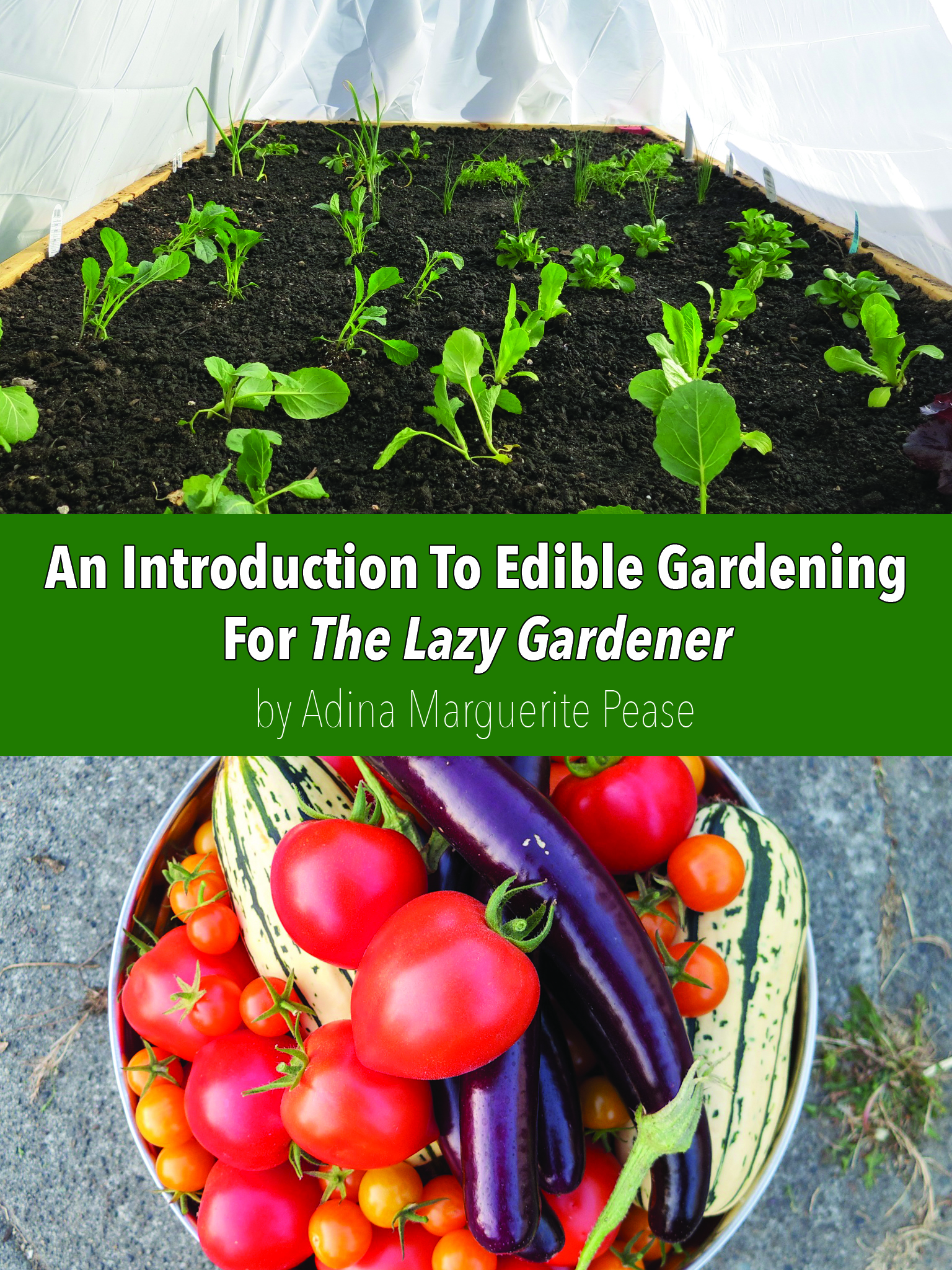 An Introduction To Edible Gardening For The Lazy Gardener