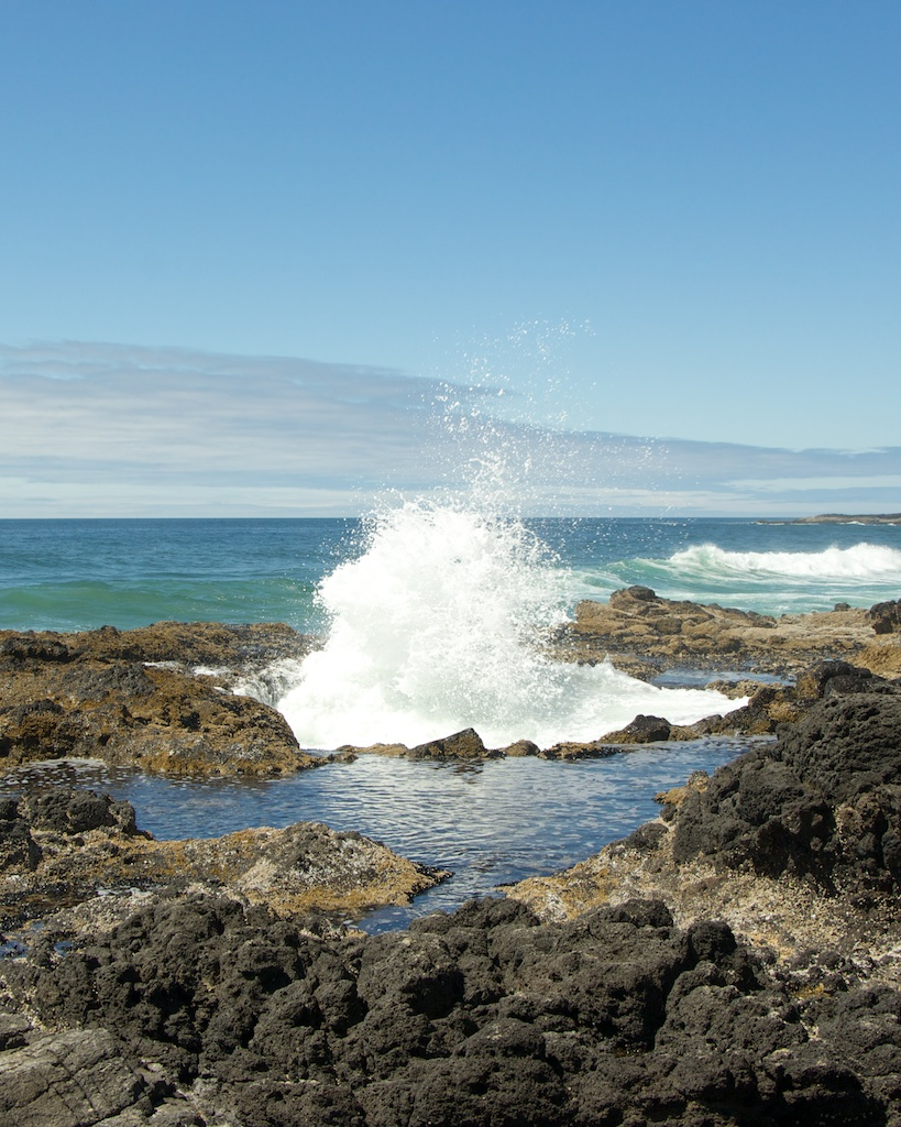 Cape Perpetua on the Oregon Coast Challenge