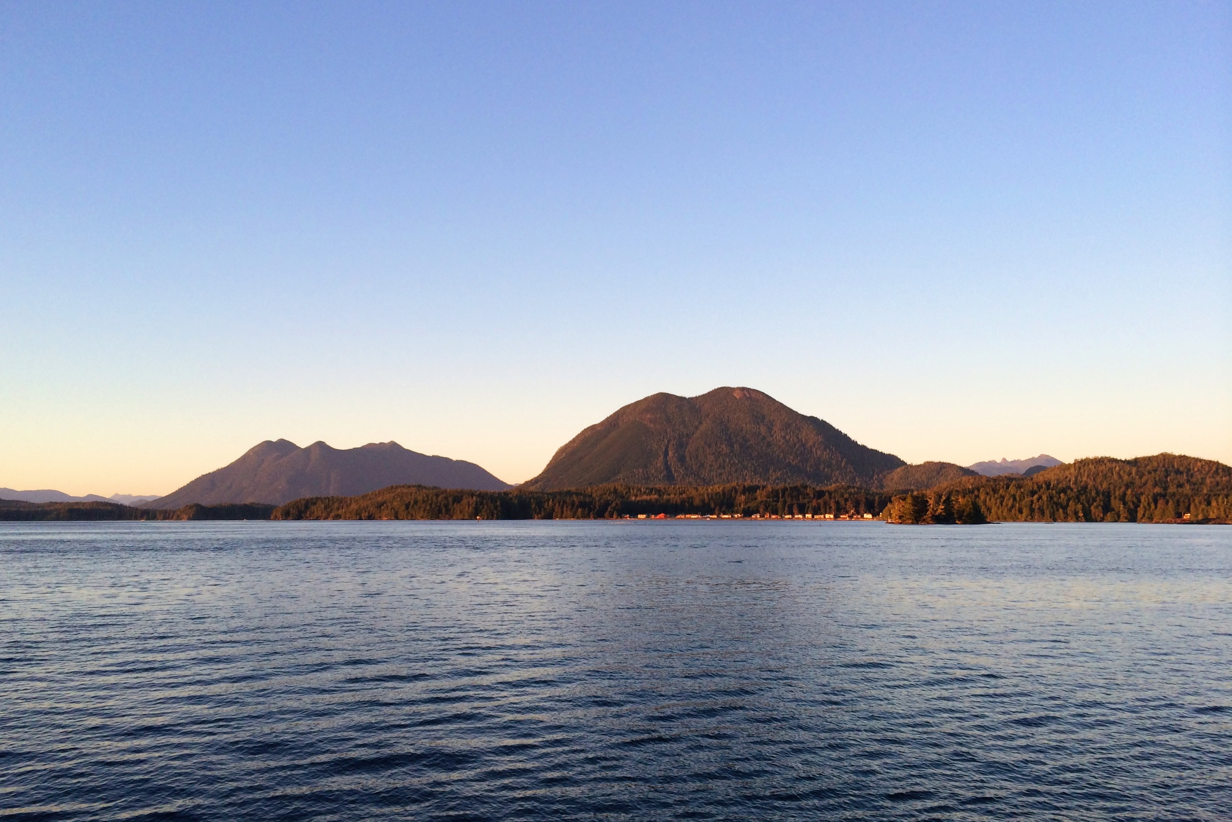 View from Downtown Tofino First Street Dock