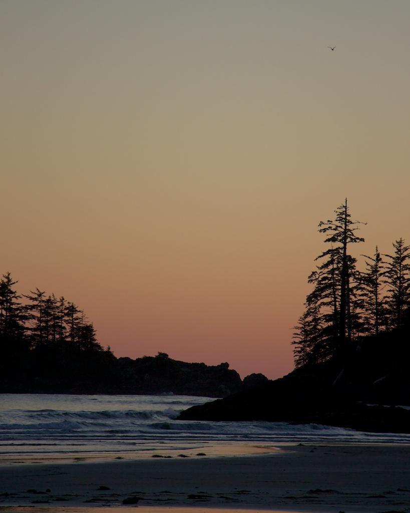 Tofino, British Columbia, Canada Photo by Fugue Photo