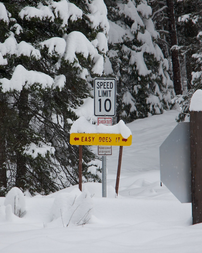 Easy Does It in McCall Idaho Photo by fugue photo