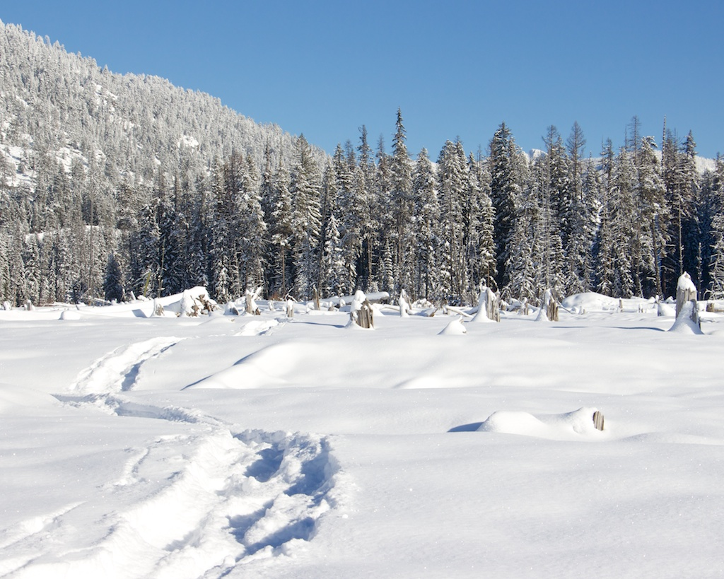 Snowshoeing off Lick Creek Road Near Little Payette Lake in McCall Idaho