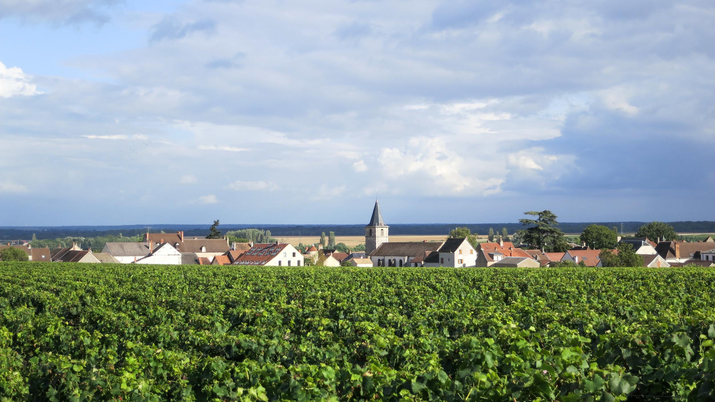 BurgundyTown-1.jpg