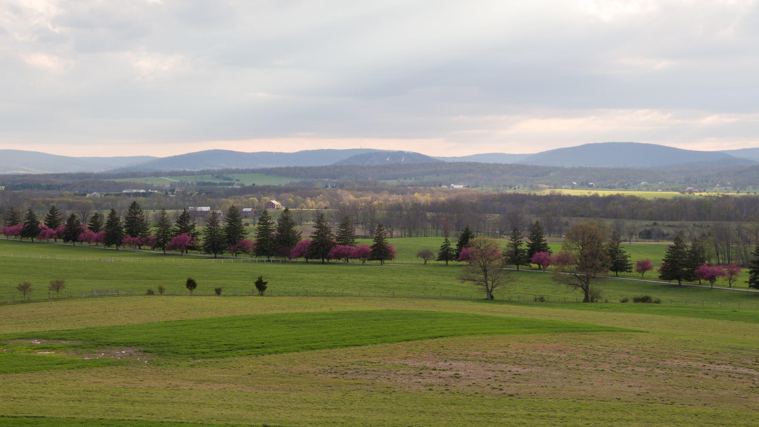 Gettysburg-3.jpg