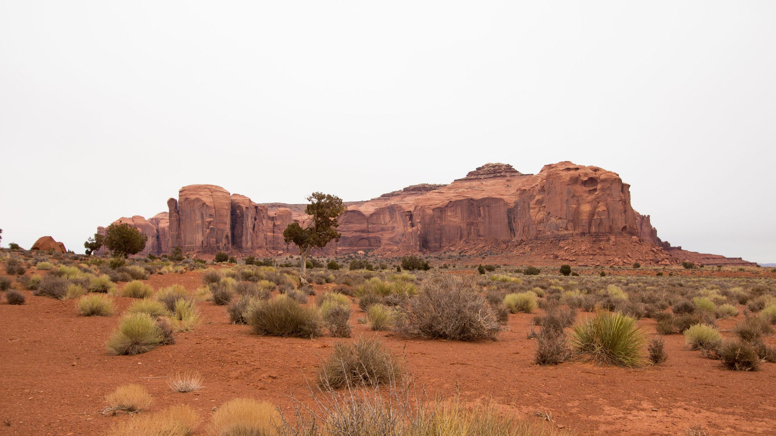 AMC_NavajoNation-2.jpg