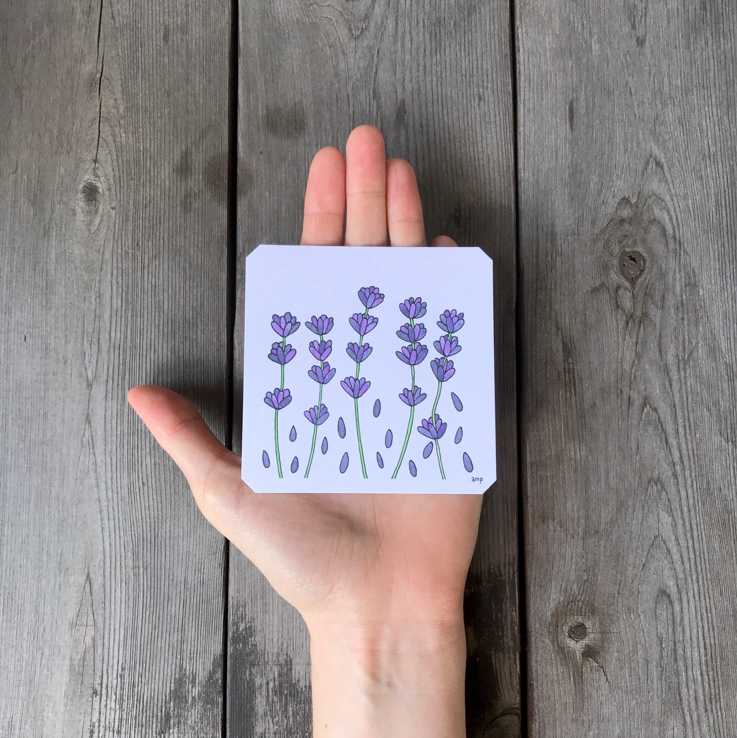 Lavender (Sold)