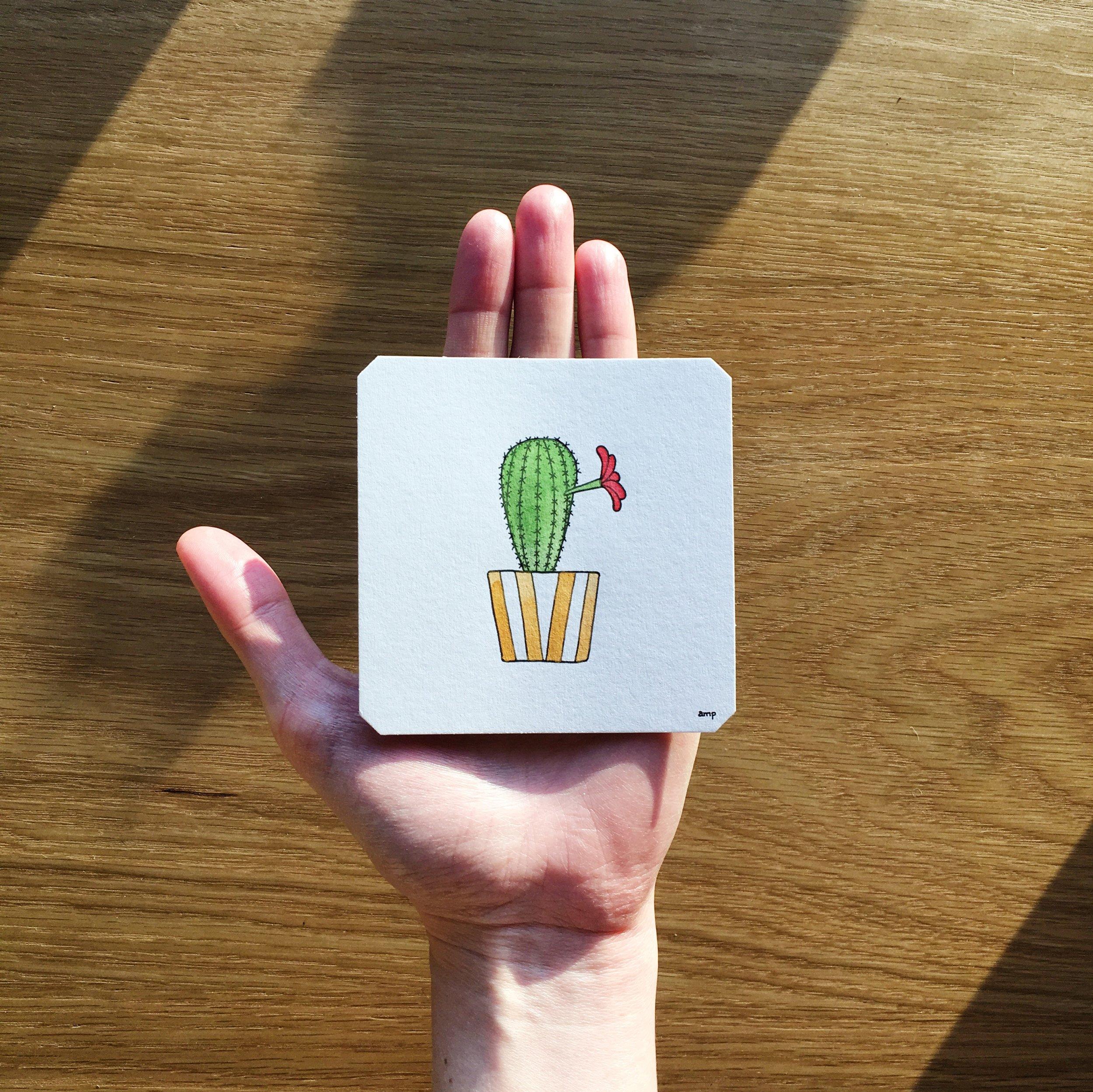 Single Bloom Cactus (Sold)