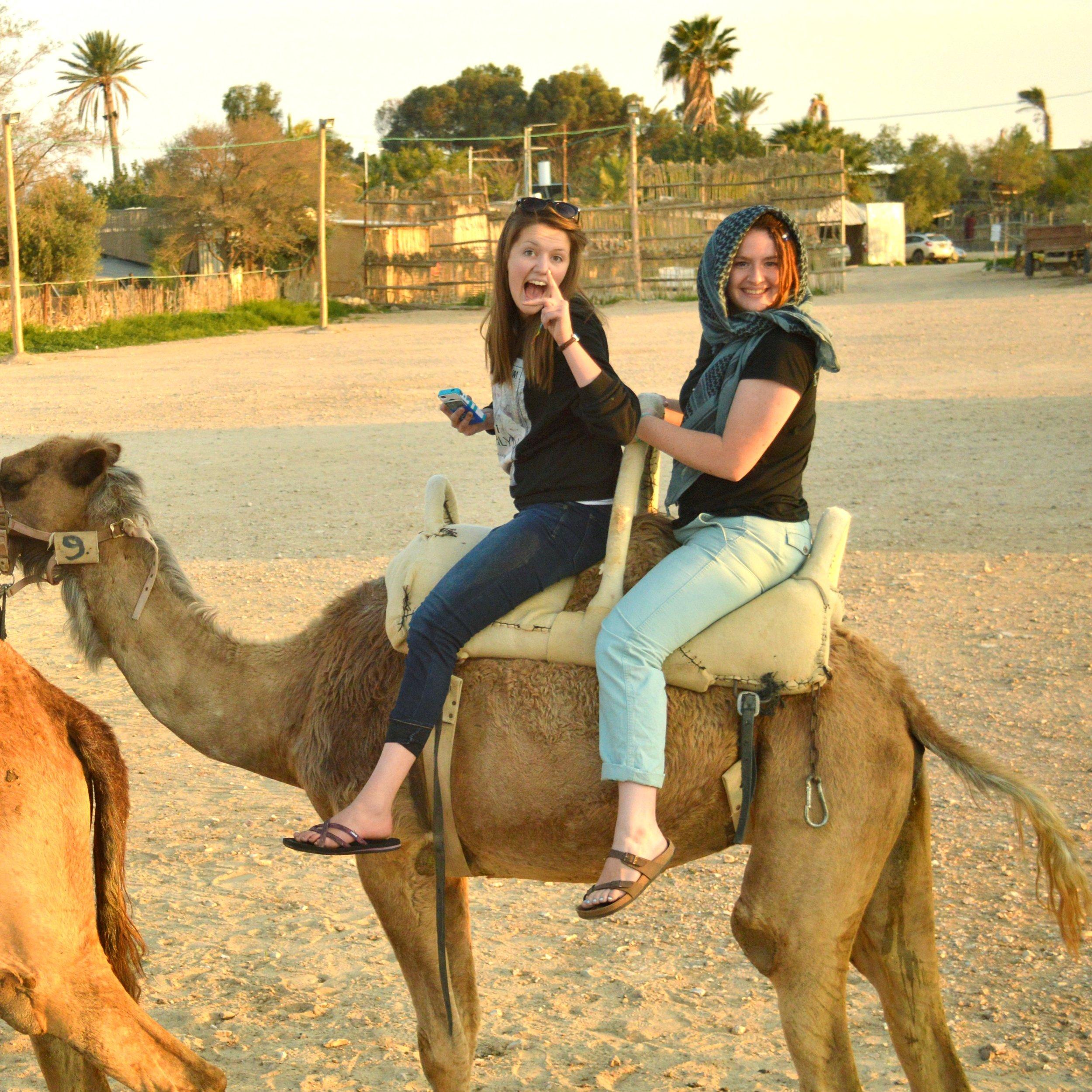 noa-camel.jpg