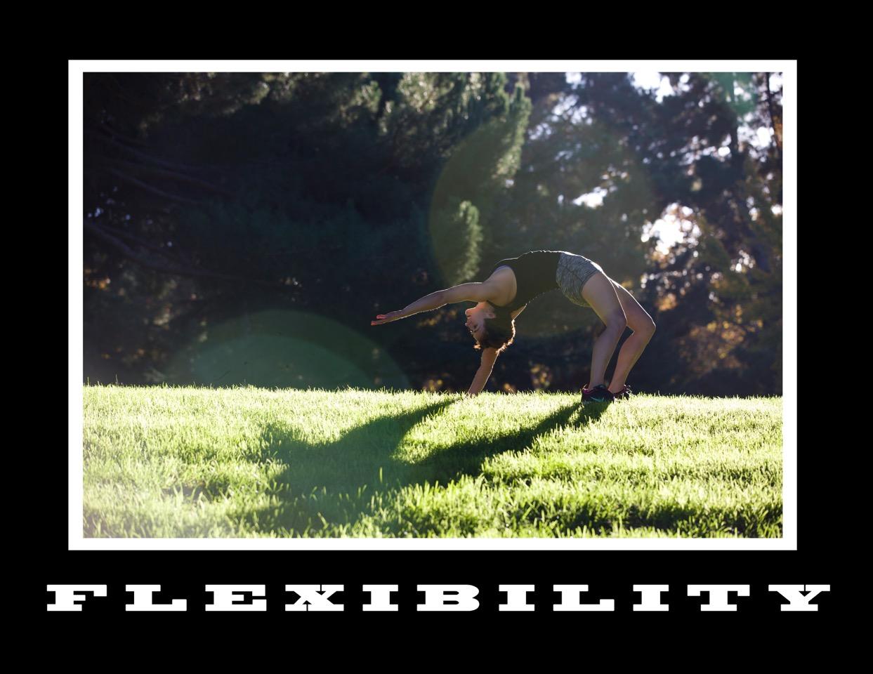 03_Flexibility.jpg