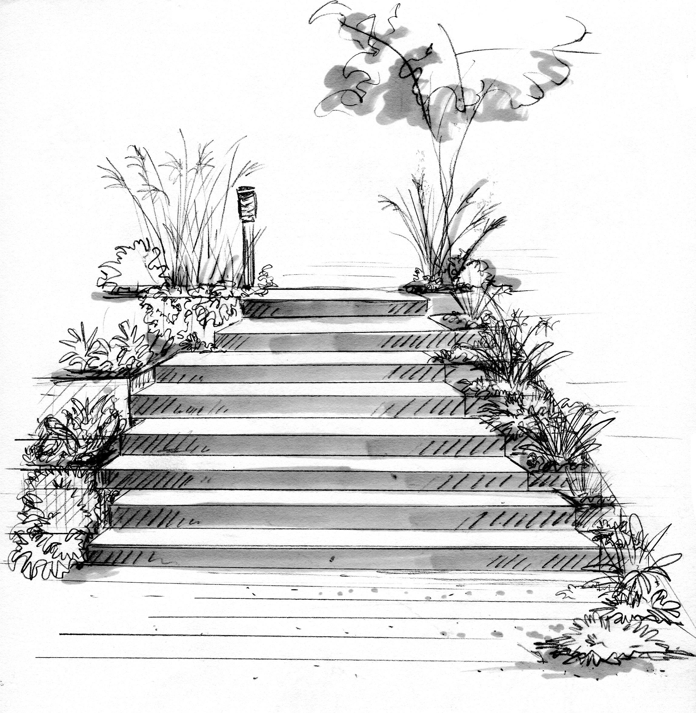 Lilli Pilli - Steps sketch.jpg