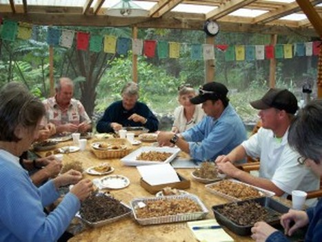 Above: Seed cleaning and sorting.  Photo Courtesy of Hawaii Island Seed Bank