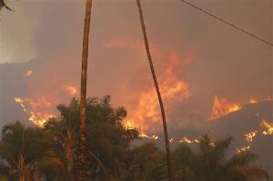 """Above: """"A wildfire burned in the hills just north of the San Gabriel Valley community of Glendora, Calif. today. Southern California authorities have ordered the evacuation of homes at the edge of a fast-moving wildfire burning in the dangerously dry foothills of the San Gabriel Mountains."""" - Associated Press"""