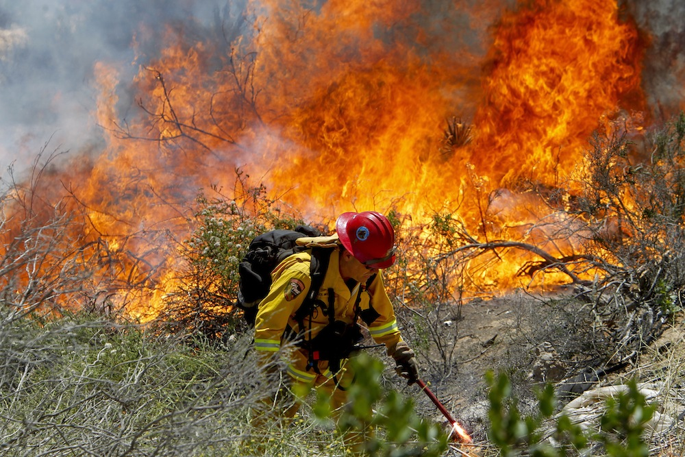 Above: California Fire Capt. Mark Miller lights a backfire as he and a crew try to knock down a brush fire near Oriole Court in Carlsbad, Calif., on May 14. Credit: AP Photo/U-T San Diego, Hayne Palmour IV