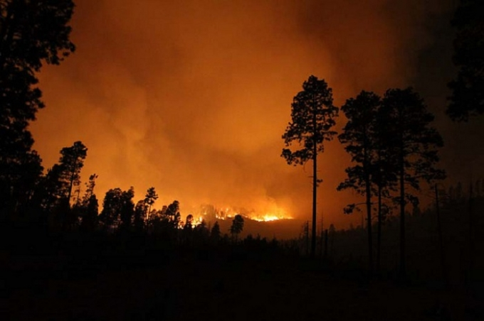 """Above: """"Researchers have discovered the first fossil-record evidence of forest fire ecology in Canada, revealing a bit more about the ancient climate of our planet.This image shows the Las Conchas wildfire in the New Mexico region.""""Credit: Jayson Coil"""