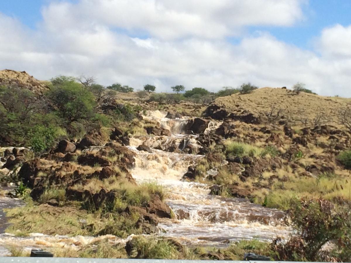 Runoff along Waiulaula watershed.JPG