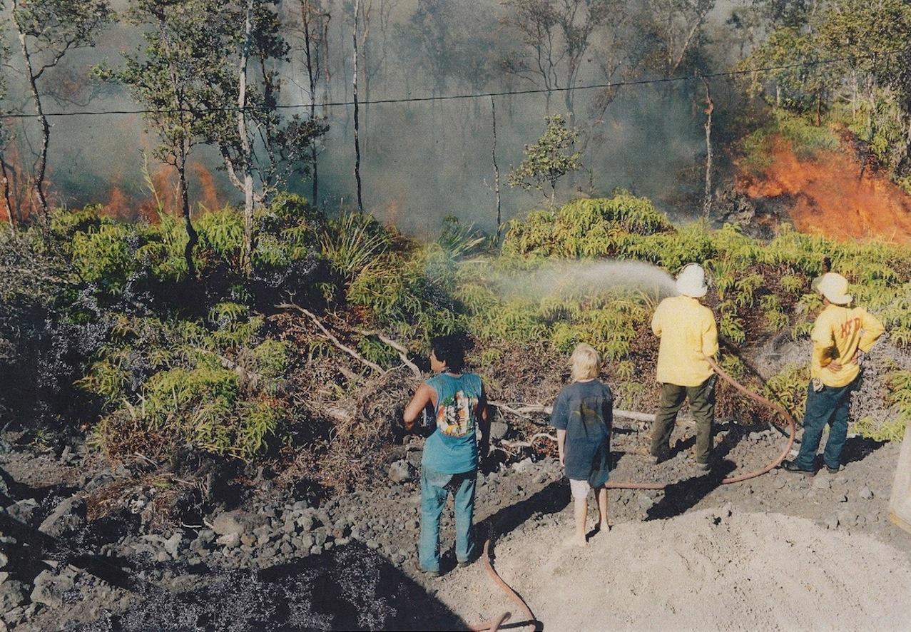Volcano fire in ferns (smaller).jpg