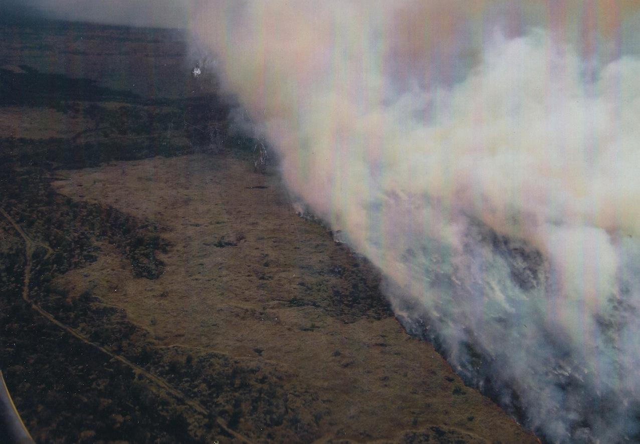 Brushfire carried by invasives (aerial shot) (smaller).jpg