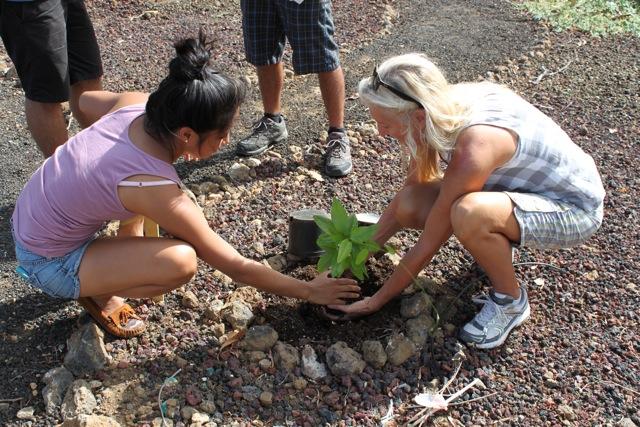 teachersplantingnativeplants-HWMO.jpg