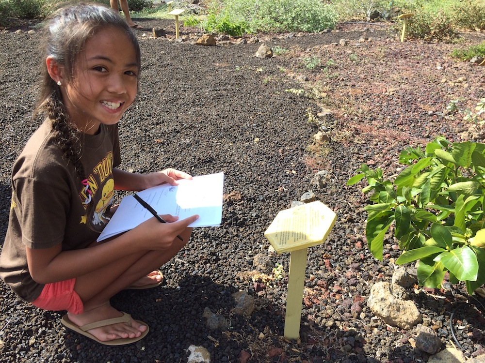 Learn about Hawaii's native plants and how they can protect your home from wildfire.