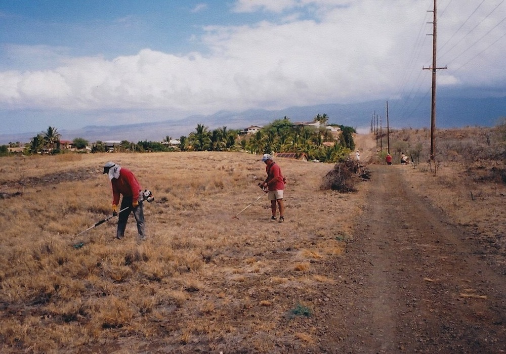 ...and weeding large tracts of land along the break.