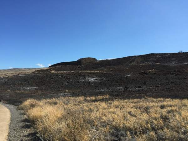 A view of the burned land around the main heiau at Puukohola Heiau National Historic Site. The National Park Service said the building suffered no apparent damage. National Park Service photo
