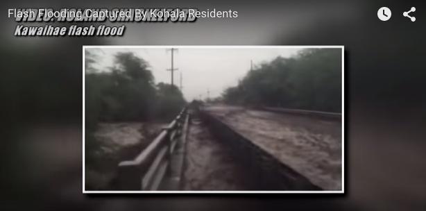 Screen capture from Big Island Video News.