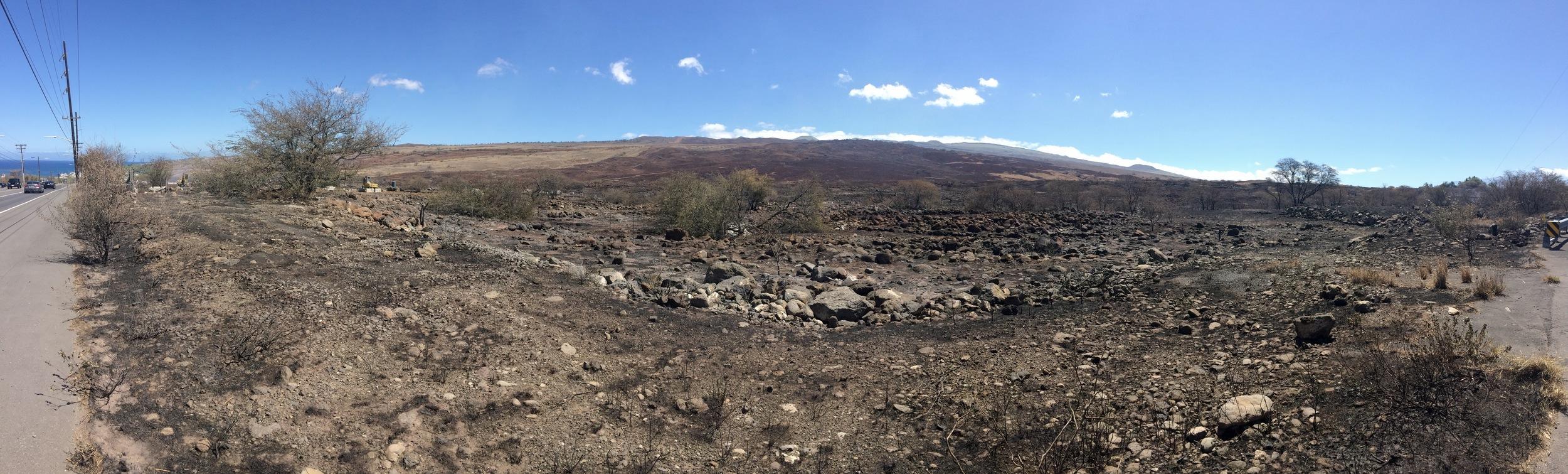 Aftermath of Kawaihae fire that burned from makai to mauka. (Pablo Beimler/HWMO)