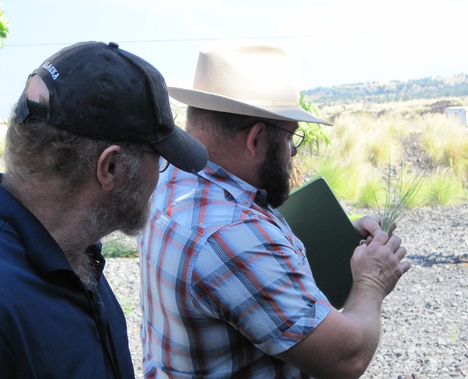 HWMO President and UH CTAHR Cooperative Extension Specialist, Mark Thorne (right), gives a lesson on fountain grass.