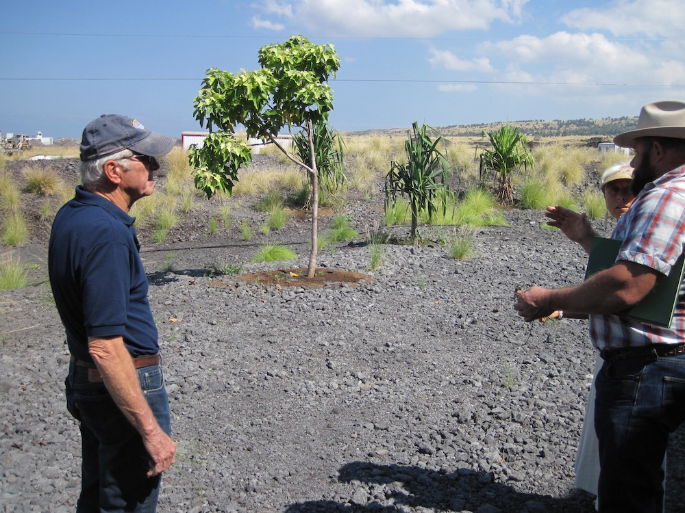 Frank Sayre (HWMO Board Director - left) listens in as Mark Thorne (HWMO President-right) speaks to Calley ONeill (HCC Palamanui Landscape Designer)