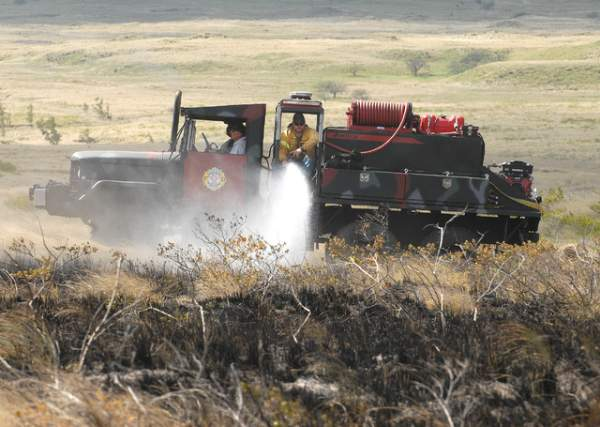 """Parker Ranch Firefighters douse hotspots on a brush fire makai of Hwy 190 on Sunday afternoon. (Laura Shimabuku/West Hawaii Today)"""