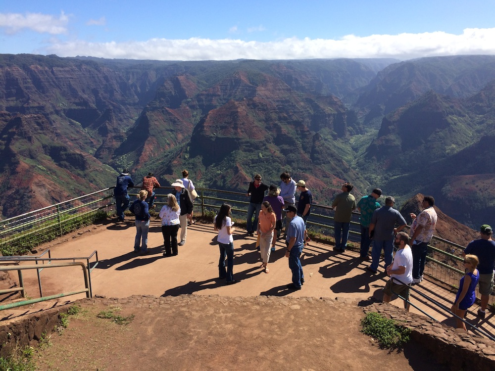 Field tour attendees soak in the beauty of Waimea Canyon.