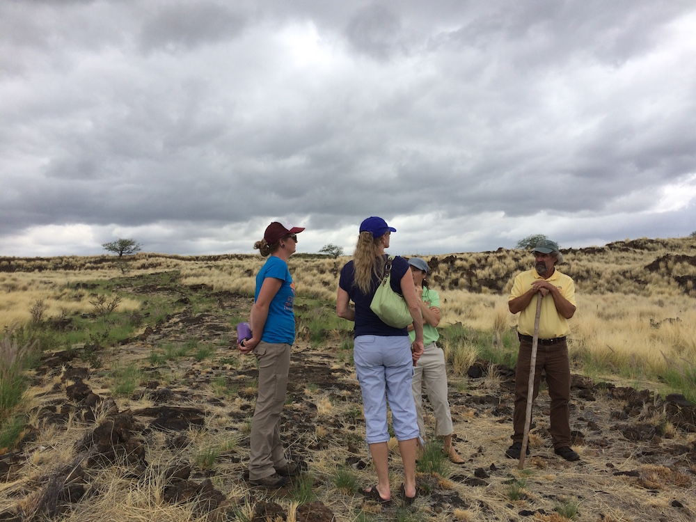 HWMO representatives discuss options for fountain grass removal with Jen Lawson (left).