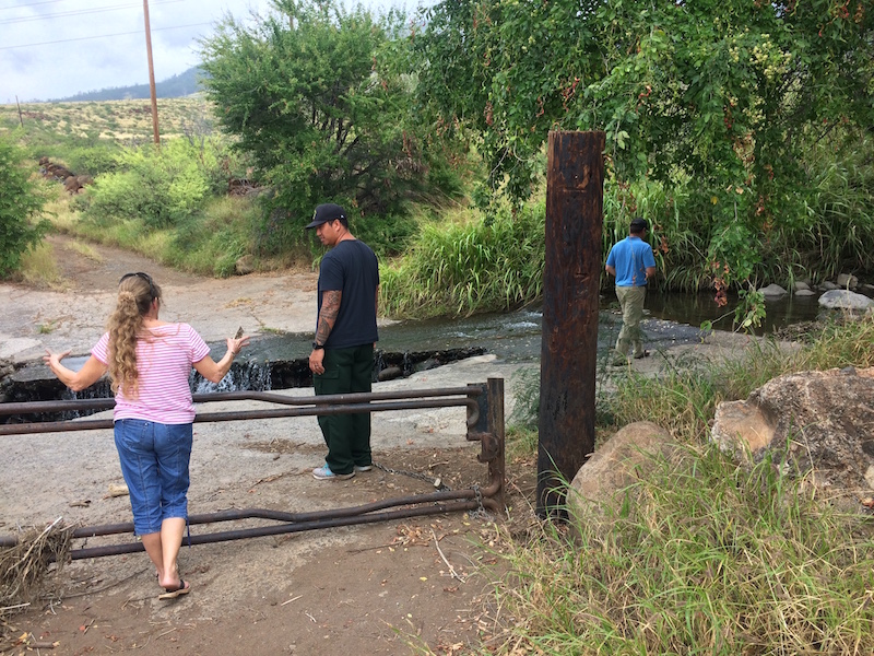 Assessment team examines road crossing on Kauaula Stream that was damaged during a recent rain event.